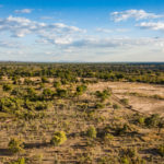 zambia hunting terrain