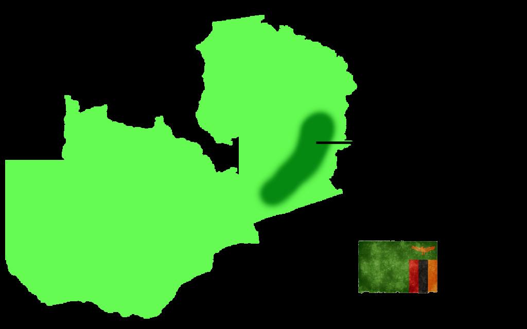 Luangwa Valley Safari in Zambia