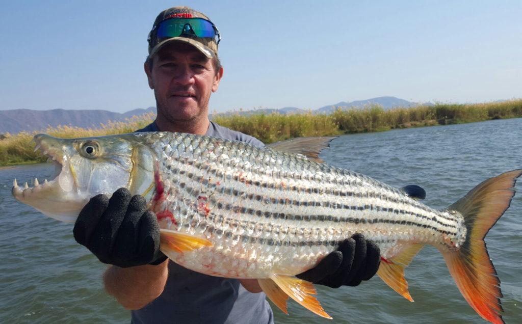 Fico Vidale fishing