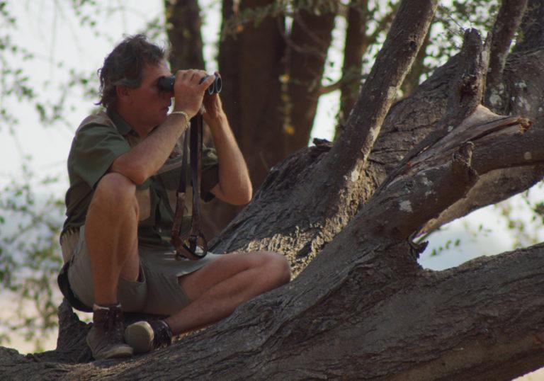Fico vidale hunting safaris