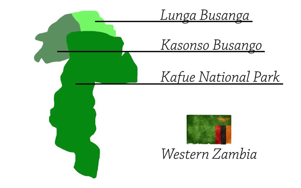 western zambia hunting