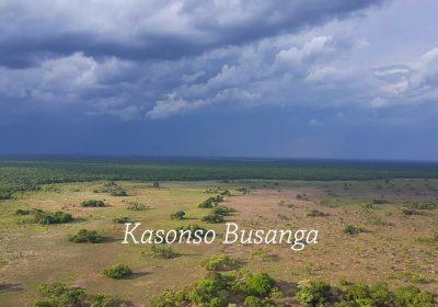 Kasonso Busanga hunting Zambia