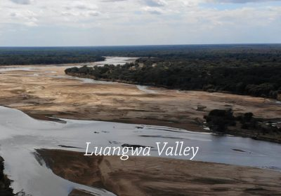 Luangwa Valley hunting Zambia