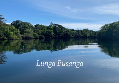 Lunga Busanga hunting Zambia
